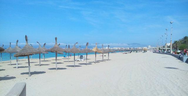 Palma tengerpart