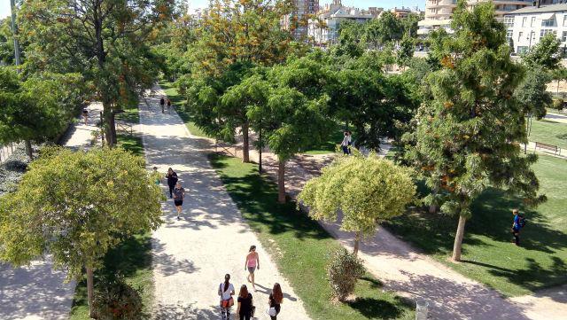Jardín de Turia park