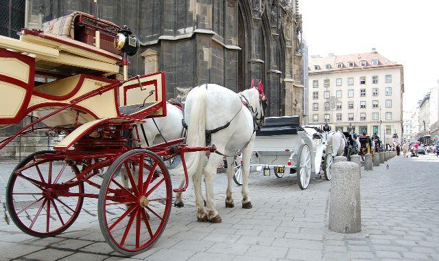 A fiáker remek szórakozás Bécsben